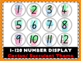 1-120 Number Cards/Display- Cactus/Succulent Theme