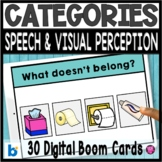 Same and Different What Doesnt Belong Household Categories Sorting Activities