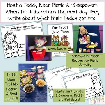 Teddy Bear Picnic and Sleepover