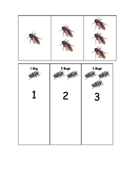 1, 2 and 3 Bugs