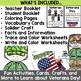 Veterans Day Activities Kindergarten and First Grade