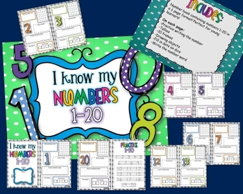 1-20 Number Book for Younger Grades!