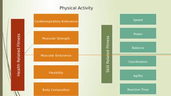1.3 Influences on Health Choices