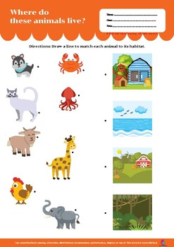 Where Do Animals Live Worksheets Teaching Resources Tpt I live in santiponce where do you live? where do animals live worksheets