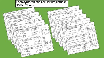 10 Biology Exit Tickets: Photosynthesis and Cellular Respiration