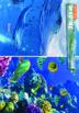 10 Biome Mini-Posters