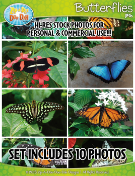 10 Butterflies Stock Photos Pack — Includes Commercial License!