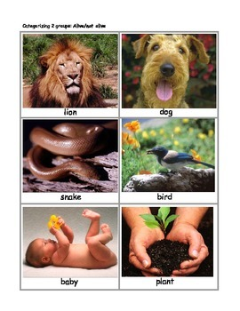 Categorizing Games Using Photos