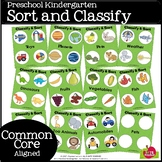 CLASSIFY AND SORT (Common Core Aligned)