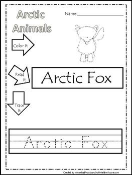 Arctic Animal Worksheets | Teachers Pay Teachers