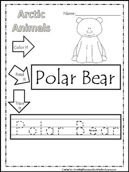10 Color, Read, Trace, and Box Write Arctic Animals Worksheets. Preschool-KDG