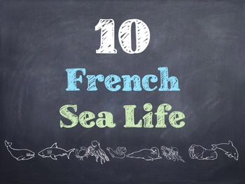10 Common French Sea Life PowerPoint