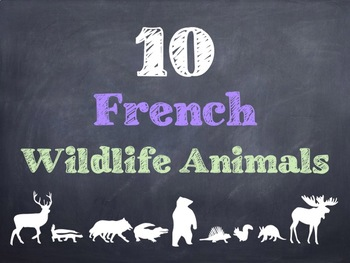 10 Common French Wildlife Animals PowerPoint