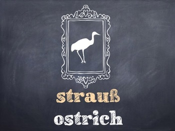 10 Common German Birds PowerPoint