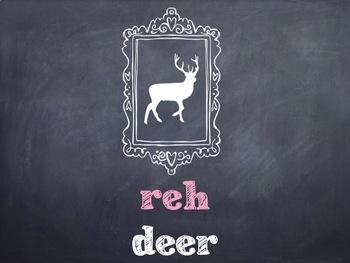 10 Common German Wildlife Animals PowerPoint