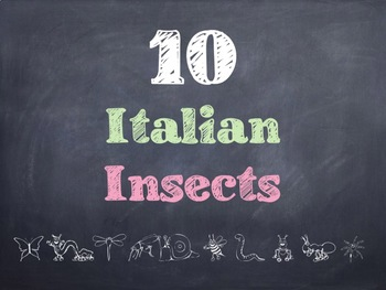 10 Common Italian Insects PowerPoint