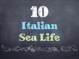 10 Common Italian Sea Life PowerPoint