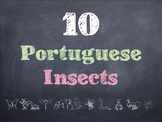 10 Common Portuguese Insects PowerPoint