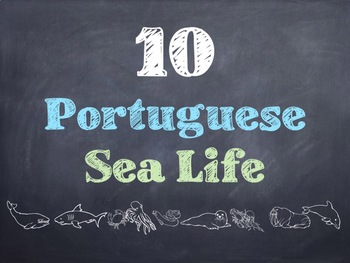 10 Common Portuguese Sea Life PowerPoint