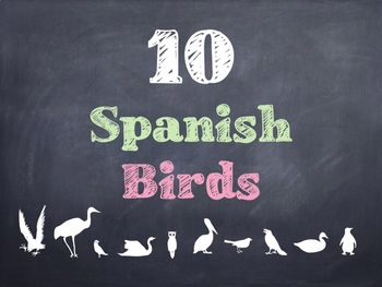 10 Common Spanish Birds PowerPoints