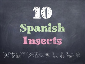 10 Common Spanish Insects PowerPoints