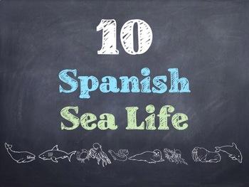 10 Common Spanish Sea Life PowerPoint
