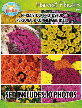 10 Harvest Flowers Stock Photos Pack — Includes Commercial License!