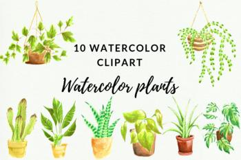 10 Indoor Plants Watercolor Clipart, Cactus Wedding Invitation, Garden Decor