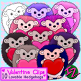 10 Lovable Hedgehogs