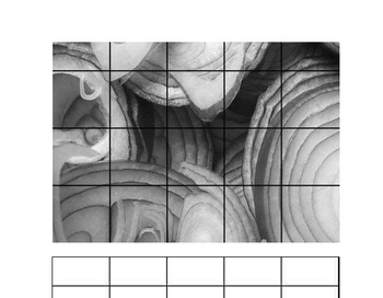 Teaching Drawing - 10 Natural Forms Grid Pictures