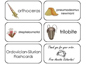 10 Ordovician-Silurian Printable Flashcards. Preschool-3rd Grade