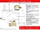 10 Science Biology Crossword Puzzle #2 Starter Activities Keyword