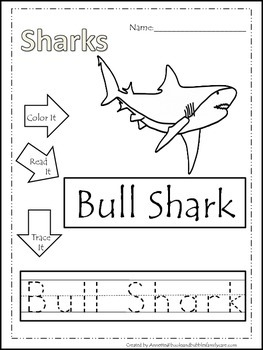 10 Shark themed printable preschool worksheets. Color, Read, Trace