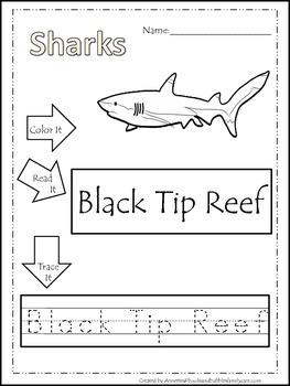 10 Shark themed printable preschool worksheets. Color, Read, Trace
