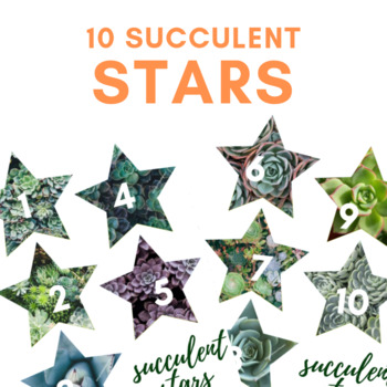 10 Succulents Stars - VIPKID Reward, Summer, Nature, Plants, Cacti, Tropical