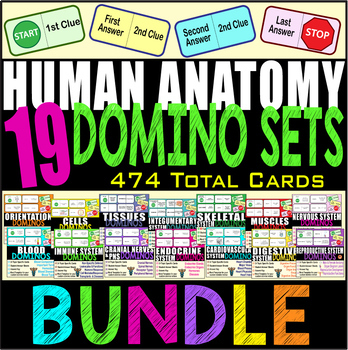 19 SET BUNDLE Human Anatomy Domino Reviews BODY SYSTEMS 474 Cards Keys