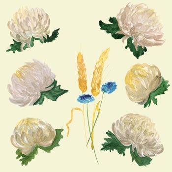10 Watercolor Chrysantemums Clip Art