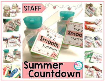 10-day Summer Staff Countdown {Perfect for your Para's}
