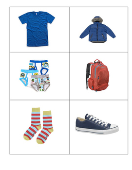 100 Common Items Picture Cards - ABLLS Resource