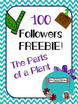 100 Followers FREEBIE! Parts of a Plant