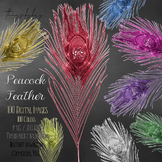100 Glitter Fairy Antique Peacock Feather Clip arts
