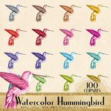 100 Watercolor Hummingbird Clip arts