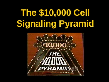 $10,000 Pyramid PowerPoint Review Game