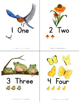1-10 Number Card Pack {Print}