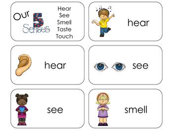 11 5 Senses Beginning Stages Flashcards. Preschool-1st Grade