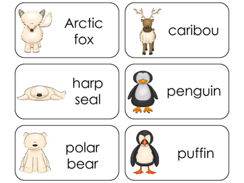 11 Arctic Animals Beginning Stages Flashcards. Preschool-1