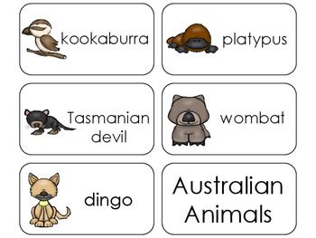 11 Australian Animals Beginning Stages Flashcards. Preschool-1st Grade