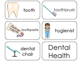 11 Dental Health Beginning Stages Flashcards. Preschool-1st Grade