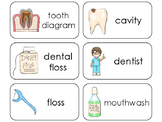 11 Dental Health Beginning Stages Flashcards. Preschool-1st Grade