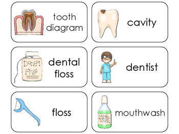 Health Flashcards Worksheets & Teaching Resources | TpT